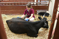 Class of 2018 Erin Cox with Bovine.