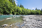 The Queets River cuts through unspoiled rainforest of Olympic National Park in Washington State.  Maple, alder and cottonwood line the river with giant old growth Spruce, Douglas Fir, Hemlock, and Western Red Cedar in the forest backdrop.  Excellent camping and trailheads. Olympic Peninsula