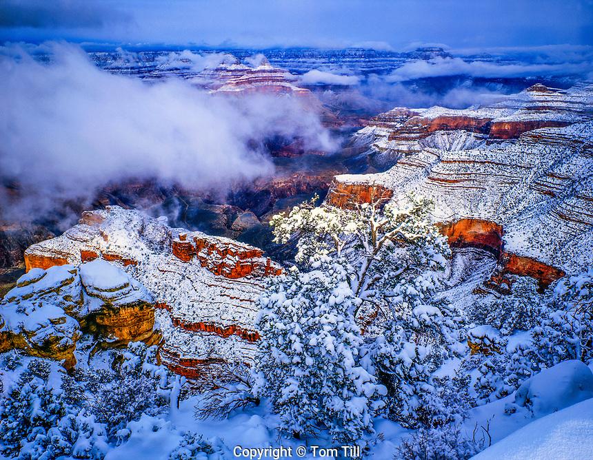 Morning Snow at the South Rim, Grand Canyon National Park, Arizona