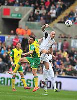 Swansea v Norwich, Liberty Stadium, Saturday 29th march 2014...<br />  Swansea's Jonjo Shelvey