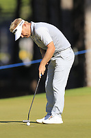 Soren Kjeldsen (DEN) putts on the 9th green during Saturday's Round 3 of the 2018 Turkish Airlines Open hosted by Regnum Carya Golf &amp; Spa Resort, Antalya, Turkey. 3rd November 2018.<br /> Picture: Eoin Clarke | Golffile<br /> <br /> <br /> All photos usage must carry mandatory copyright credit (&copy; Golffile | Eoin Clarke)