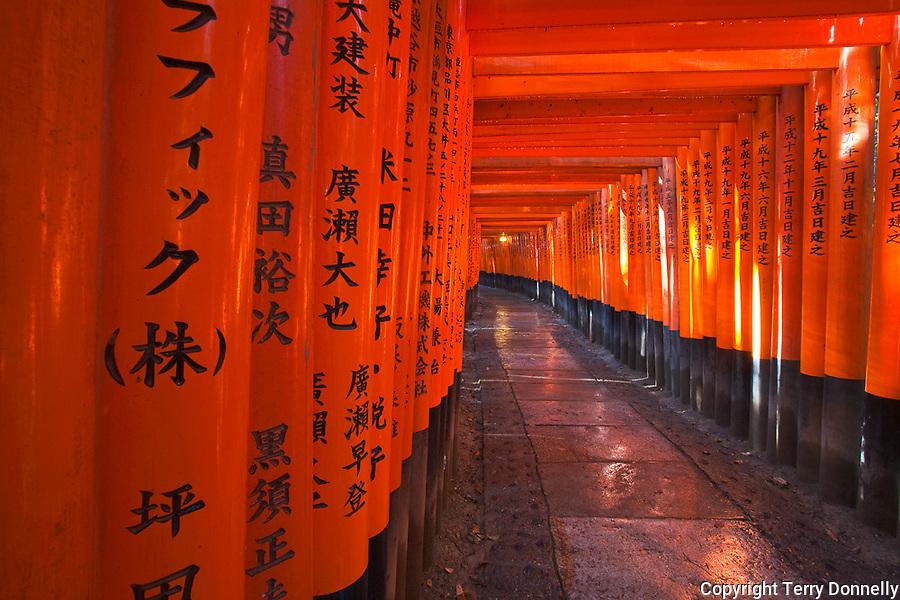 Kyoto City, Japan<br /> Walkway of torii (offering) gates at Fushimi Inari Shrine (Shinto)