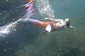Emily cenotes