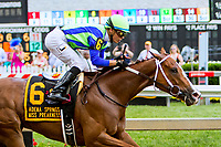 BALTIMORE, MD - MAY 19:  * , # with * wins the Miss Preakness Stakes on Black-Eyed Susan Day at Pimlico Race Course on May 19, 2017 in Baltimore, Maryland.(Photo by Sue Kawczynski/Eclipse Sportswire/Getty Images)