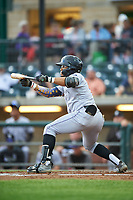 Grand Junction Rockies Todd Isaacs (1) squares to bunt during a Pioneer League game against the Billings Mustangs at Dehler Park on August 14, 2019 in Billings, Montana. Grand Junction defeated Billings 8-5. (Zachary Lucy/Four Seam Images)