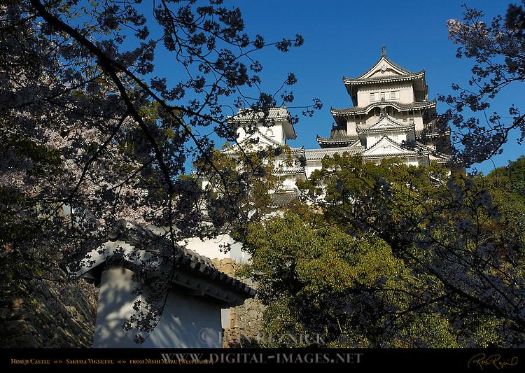 Himeji Castle Sakura Vignette view from Nishi-no-Maru West Bailey Shirasagi-jo White Heron Castle Himeji Japan