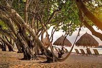 Beach and chairs at Four Seasons. Punta Mita, Mexico.