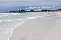 Rarawa Beach, a popular and beautiful white sand beach in Northland Region, North Island, New Zealand