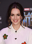 HOLLYWOOD, CA - JANUARY 29: Actor Elizabeth Henstridge attends the premiere of Disney and Marvel's 'Black Panther' at  the Dolby Theater on January 28, 2018 in Hollywood, California.