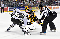HERSHEY, PA - NOVEMBER 28: An official drops the puck for a face-off between Hershey Bears center Brian Pinho (28) and Wilkes-Barre/Scranton Penguins center Teddy Blueger (23) during the Wilkes-Barre/Scranton Penguins at Hershey Bears on November 28, 2018 at the Giant Center in Hershey, PA. (Photo by Randy Litzinger/Icon Sportswire)