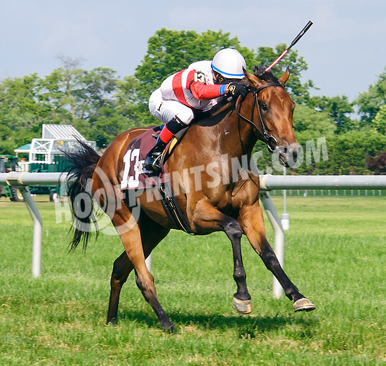 My Impression winning The Christiana Stakes at Delaware Park on 7/6/16