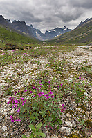 Arrigetch peaks, Gates of the Arctic National Park, Alaska
