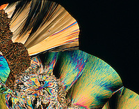 CITRIC ACID CRYSTALS<br /> Monohydrate C6H807 - 75x mag  liquefied & recrystallized under polarized light