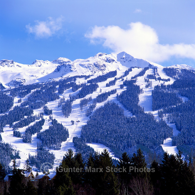 Blackcomb Mountain Ski Runs, Whistler Ski Resort, BC, British Columbia, Canada, Winter