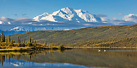 Late Morning Sunshine On Wonder Lake Reflecting The North Face Summit Of Mt. Denali, North America's Largest Mountain, Denali National Park, Interior, Alaska.