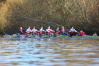Crew: 3   Op U23 8+ U23   Oxford Brookes University Boat Club   OXB-GERRARD<br /> <br /> Wallingford Head 2017<br /> <br /> To purchase this photo, or to see pricing information for Prints and Downloads, click the blue 'Add to Cart' button at the top-right of the page.