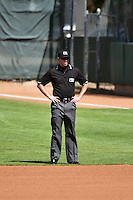 Base umpire Aaron Higgins prior to the game between the Idaho Falls Chukars and the Ogden Raptors on July 27, 2014 at Lindquist Field in Ogden, Utah. (Stephen Smith/Four Seam Images)
