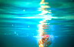 Swimming (aquatic locomotion) is biologically propelled motion through a liquid medium. Swimming has evolved a number of times in a range of organisms ranging from arthropods to fish to molluscs.