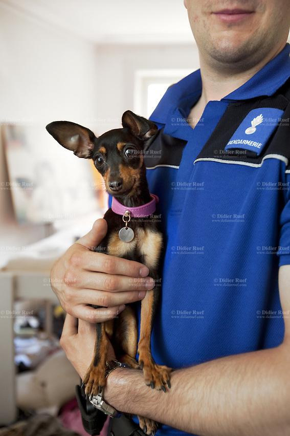 Policeman Dog Animal Appartment Uniform Didier Ruef Photography