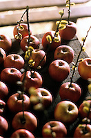 Red apples laid out on a rustic table