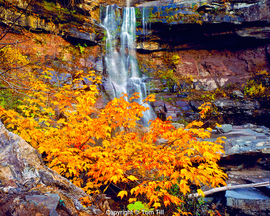 Autumn at Kaaterskill Falls, Catskill Forest Preserve, Catskill Mountains, New York