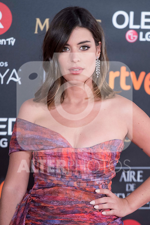 Dulceida attends red carpet of Goya Cinema Awards 2018 at Madrid Marriott Auditorium in Madrid , Spain. February 03, 2018. (ALTERPHOTOS/Borja B.Hojas)