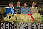 Sylvester Boland, Doneraile, Co Cork, second from left, seller of the Supreme Champion Weanling Bull, at the 50th anniversary Mid Kerry Mart Show and Sale in Milltown on Saturday. Also pictured are Denis Sheehan, mart manager, Tadgh O'Connor, Rathmore, purchaser and Jimmy Daly, Mart Chairman..NO FEE