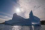Greenland Adventure