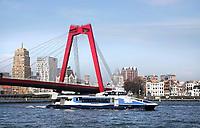 Nederland - Rotterdam - 26 maart 2018.  Waterbus bij de Willemsbrug. Foto Berlinda van Dam / Hollandse Hoogte.