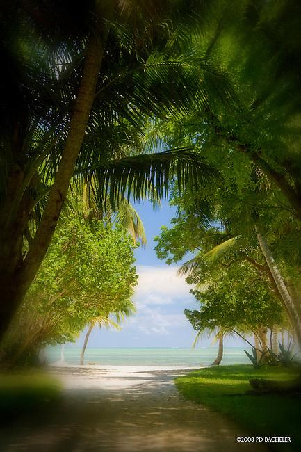 Beach Road Islamorada