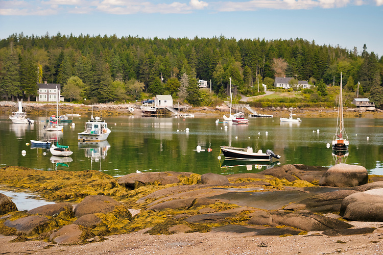 This quinessential scene embodies all of what quaint harbors look like on the northern Maine coastline.