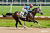 Run with Honor winning  at Delaware Park racetrack on 6/9/14