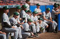 Dartmouth Big Green bench looks on during a game against the Bradley Braves on March 21, 2019 at Chain of Lakes Stadium in Winter Haven, Florida.  Bradley defeated Dartmouth 6-3.  (Mike Janes/Four Seam Images)