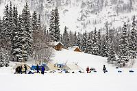 Ed Itens sled dog team arrives @ Finger Lake Chkpt 2006 Iditarod Finger Lake Alaska Winter