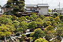 8th World Bonsai Convention in Saitama