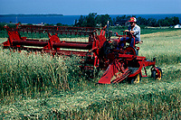 Agriculture<br /> <br /> <br /> Photo : Agence Quebec Presse