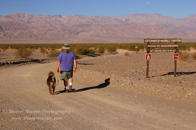 Man and dog walking down Cottonwood Canyon Road, Stovepipe Wells, Death Valley National Park, California