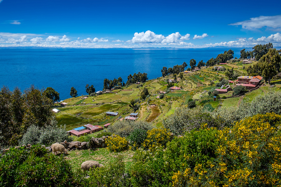 Terraces in Taquile Island and view of Lake Titicaca, Peru.