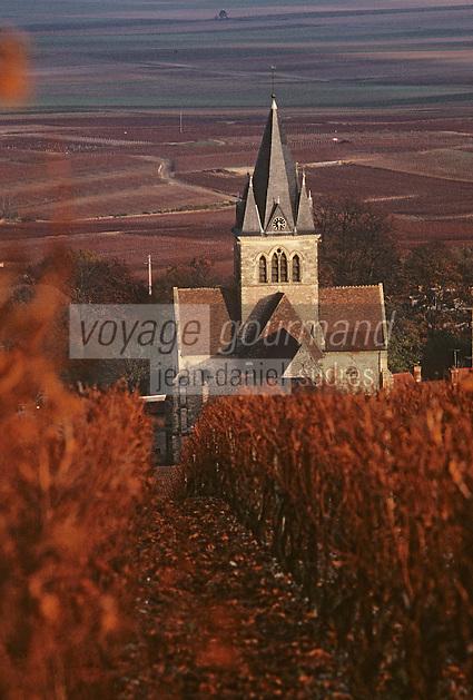 Europe/France/Champagne-Ardenne/51/Marne/Ville-Dommange: Le clocher, le village et le vignoble champenois