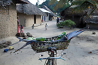 PEMBA, TANZANIA - DECEMBER - 7 : A fisherman let his catch on a bicycle on December 7, 2010 on Pemba, Tanzania. (Photo by: Per-Anders Pettersson)