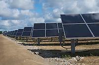 Rows of solar panels at a solar generation farm