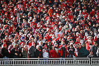 Ohio State Buckeyes fans cheer up in the upper bowl after a touchdown against Michigan State Spartans during the 2nd quarter at Spartan Stadium in East Lansing, Michigan on November 8, 2014.  (Dispatch photo by Kyle Robertson)