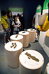 """Visitors see different kind of human feces at the Toilet!? Human Waste & Earth's Future exposition on August 1, 2014 in Tokyo, Japan. The Toilet!? Human Waste & Earth's Future is an exposition to listen the toilet's voice and explore what is the """"happy toilet"""" for each human being on the earth at National Museum of Emerging Science and Innovation in Tokyo from July 2 to October 5. The toilet is related not only to our daily life but also to the global environment. The exposition consist of eight areas where you can learn toilet problems for each generation and in the world. (Photo by Rodrigo Reyes Marin/AFLO)"""