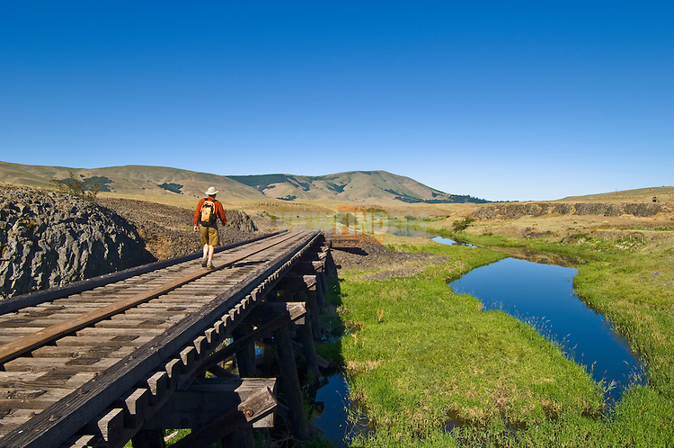 Hiker crossing one of three old railroad trestles as the Klickitat Trail enters Swale Canyon west of the Harms Way trailhead; between Lyle and Goldendale in the Klickitat Valley of south central Washington.