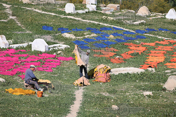 Sheep and goat skins that have processed and dyed in a traditional tannery are laid out in the sun in order to dry.