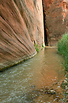The East Fork of the Virgin River hits a sharp corner in Parunuweap Canyon.<br />