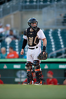 Jupiter Hammerheads catcher B.J. Lopez (15) during a game against the Palm Beach Cardinals on August 4, 2018 at Roger Dean Chevrolet Stadium in Jupiter, Florida.  Palm Beach defeated Jupiter 7-6.  (Mike Janes/Four Seam Images)