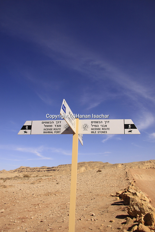 Israel, Negev desert, Nabatean milestones on the Spice Route in Ramon Crater