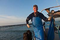 Europe/France/Bretagne/22/Côtes d'Armor/Hillion :  Bruno Crépieux Myticulteur,  qui produit les moules de bouchot de la Baie de Saint-Brieuc [Non destiné à un usage publicitaire - Not intended for an advertising use]