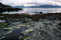 Haida Gwaii (Queen Charlotte Islands), BC, British Columbia, Canada - Rocky Coastline on Hotspring Island